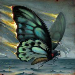 Chris_Buzelli_ButterflyFire copy
