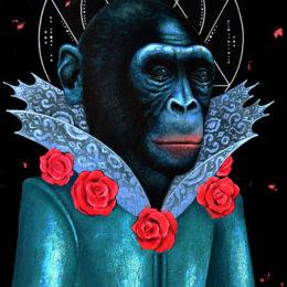 LAROTONDA_bonobo_web