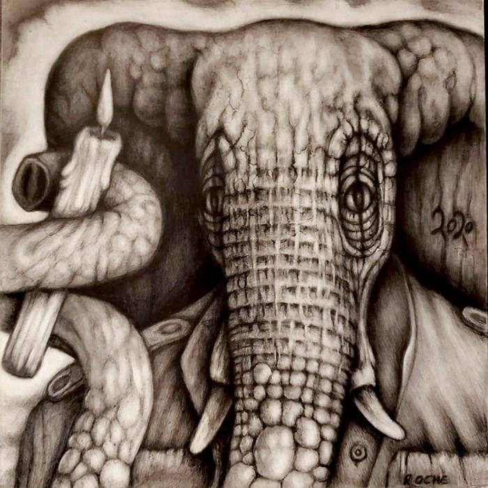 MARC_ROCHE_LITTLE_ELEPHANT_LOST
